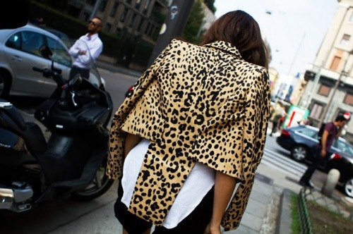 theyallhateus they all hate us fashion leopard print