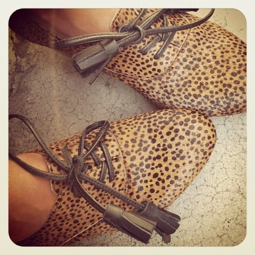 sincerely jules leopard print fashion
